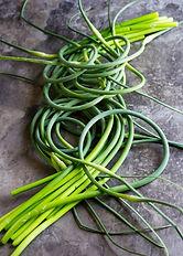 garlic-scape1.jpg