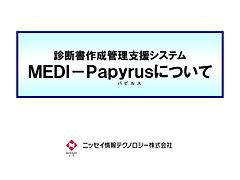 スポンサーPR3(Papyrus製品紹介)表紙.jpg