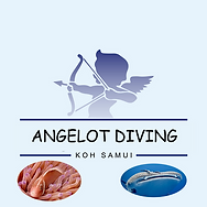 Angelot Diving - Koh Samui Thailande