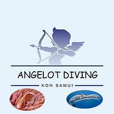 Plongée sous marine Koh Samui Thailande