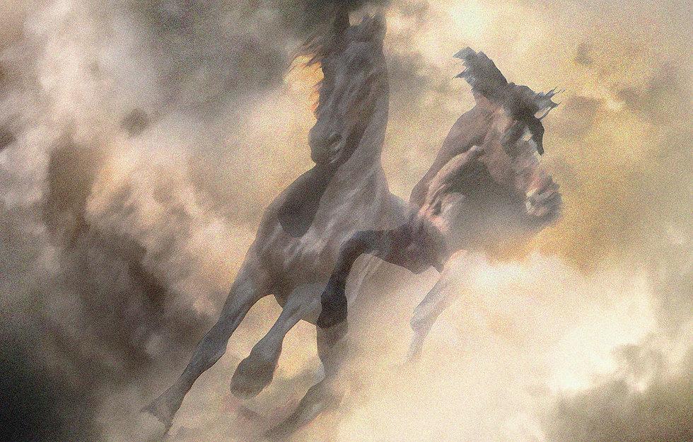 horses 2_hi.jpg