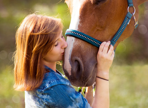 Top 5 Ways to Gain a Horse's Trust