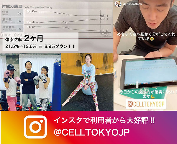 CELL_LP_3.jpg