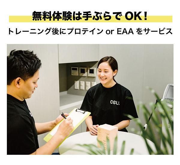 CELL_LP_7.jpg