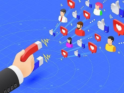 12 Posts Redes Sociais / mês