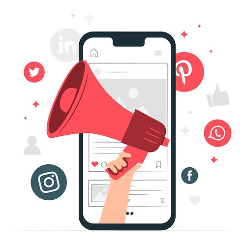 20 Posts Redes Sociais / mês