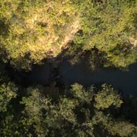 Brasilandia 072021 (1).DNG