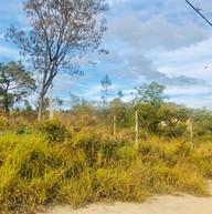 Parque do Sabia - Esmeraldas (15).jpg