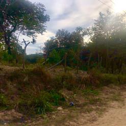 Parque do Sabia - Esmeraldas (11).jpg