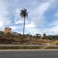 Parque do Sabia - Esmeraldas (45).jpg