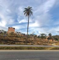 Parque do Sabia - Esmeraldas (42).jpg