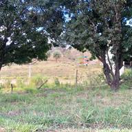 Parque do Sabia - Esmeraldas (6).jpg