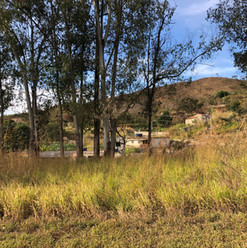 Parque do Sabia - Esmeraldas (2).jpg
