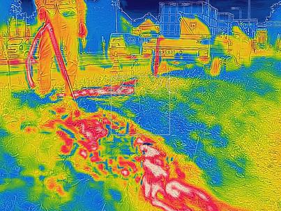 Warmtebeeldcamera bij bestrijding met heet water