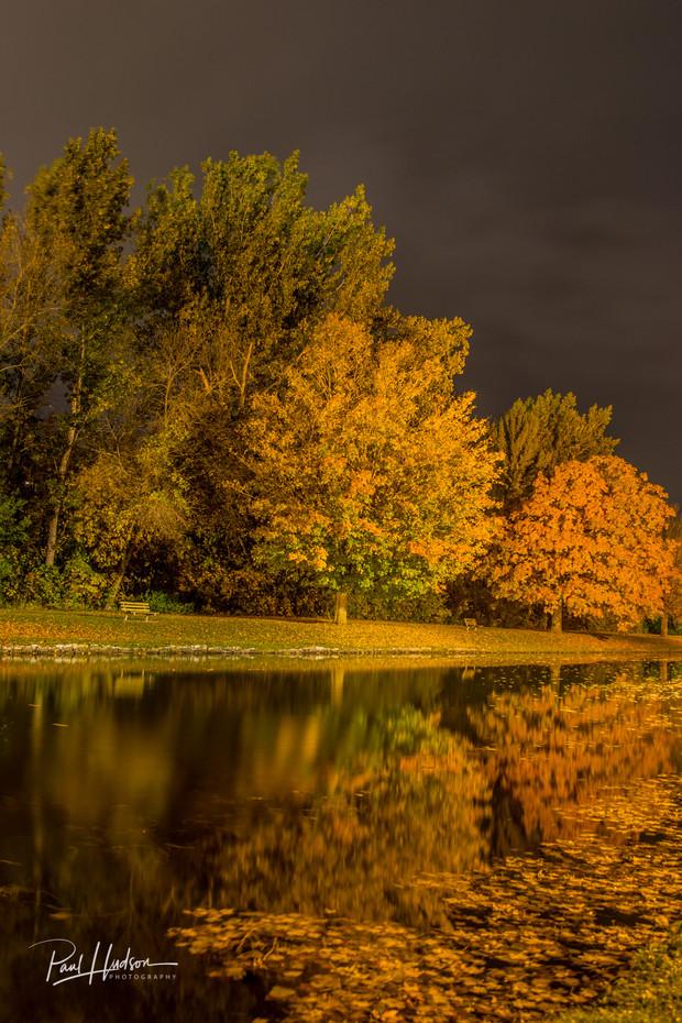 Autumn Colours at Night