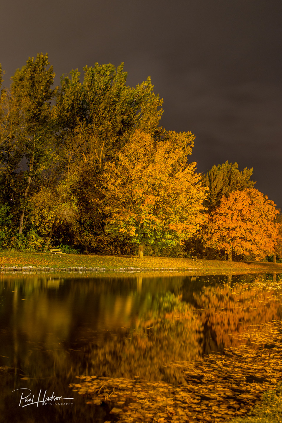 Autumn Colours at Night