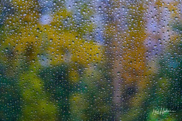 Rocky Mountaineer rain day