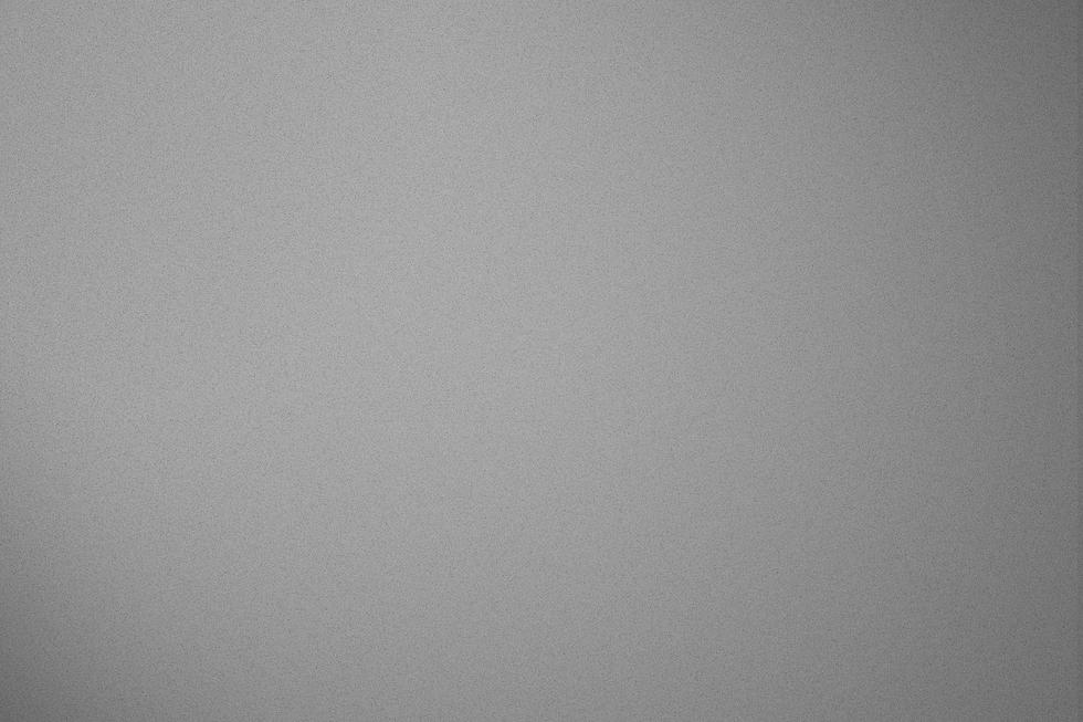 grey back.png