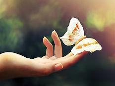 Hand-fingers-butterfly_1600x1200.jpg