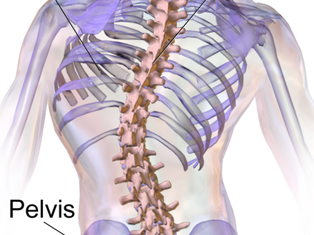 Scoliosis - Is It As Bad As You Think It Is?