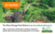 Arboretum slide.jpg