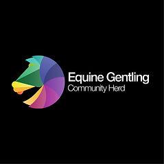 Branding Design Horse Charity