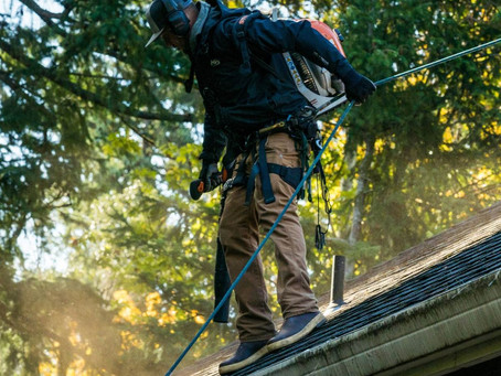 How Often Should You Have Your Gutters Cleaned?
