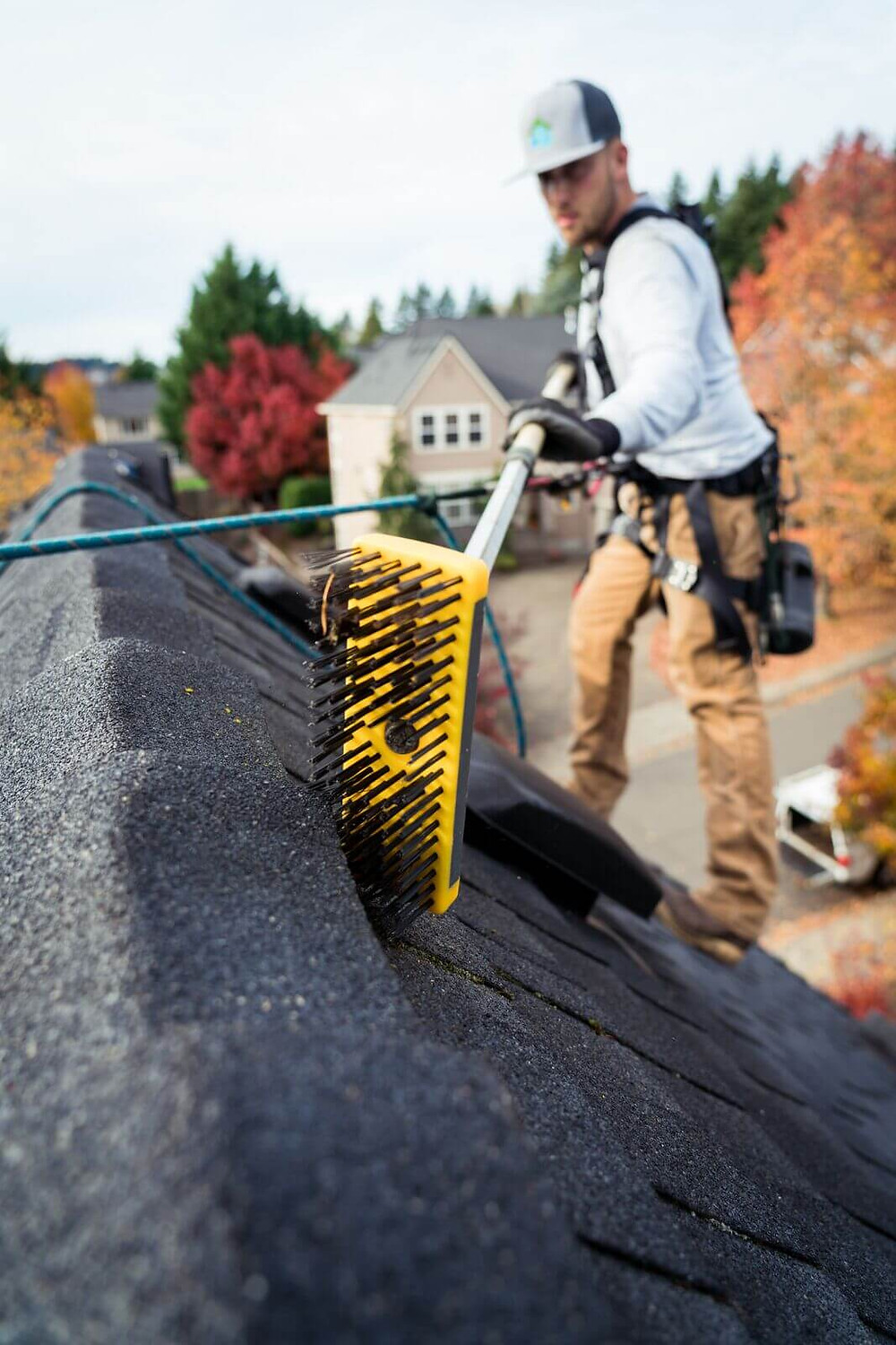 what is the best moss killer for roofs