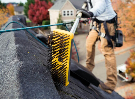 What Is The Best Moss Killer For Roofs?