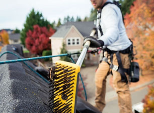 best products for roof moss cleaning