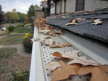 Are Gutter Guards Worth It?