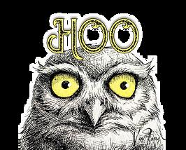HOO Logo transparent.png