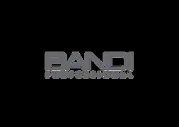 bandi logo.png