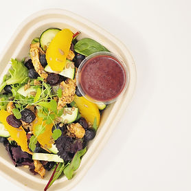 Cranberry, Orange _ Chicken Salad with B