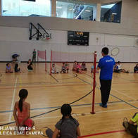 Badminton Demonstration