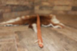 Cherokee longow, cherokee archery