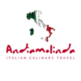 andiamolinda Logo (2).png