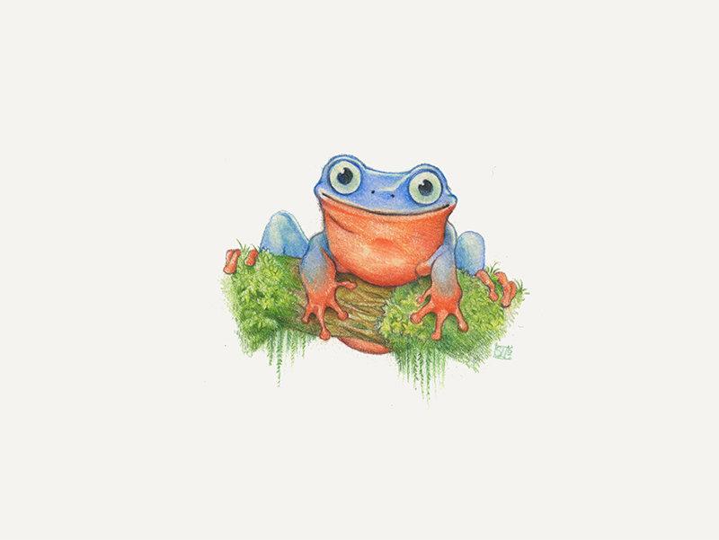 frog_web.jpg