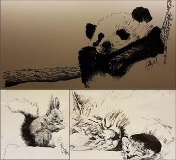 Whiteboard Drawings, 2019