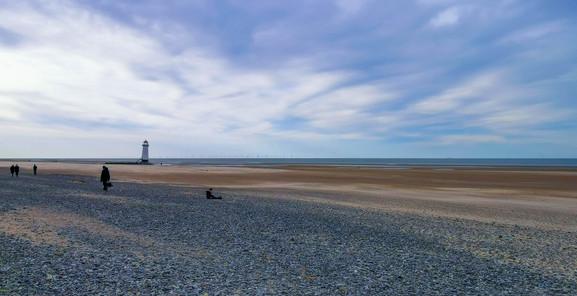 Beachscape18.jpg