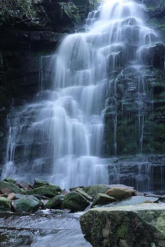 Woodland Waterfalls3.jpg