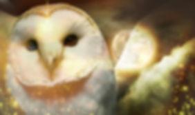 owlcollage.jpg