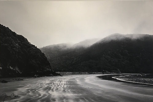 Misty Morning (Whites Bay) by James Cowie