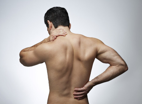 Back Pain Causing Bacteria Discovered