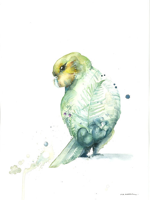 Kakapo By Mia Riddell
