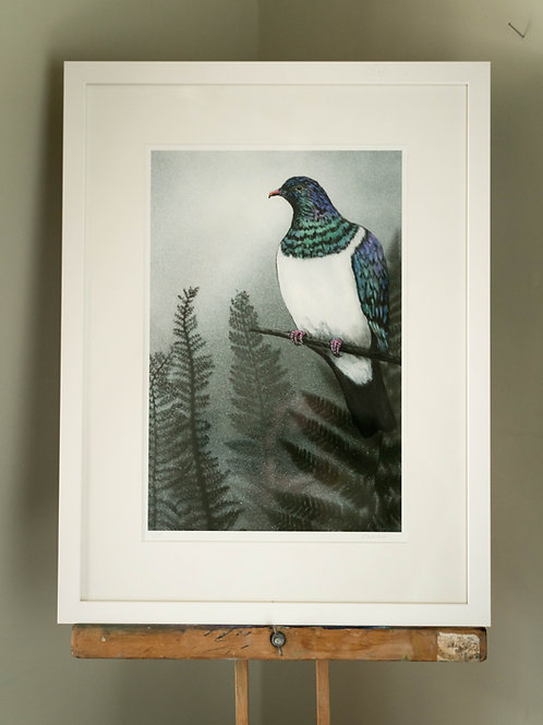 Kereru By Lesley Reeves