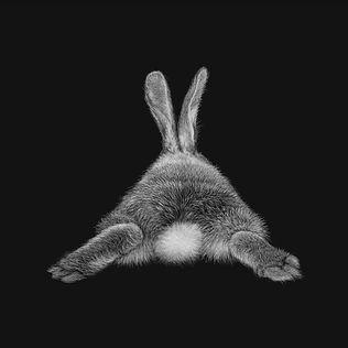 bunny-art.jpg