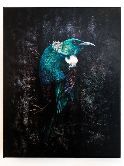 Iridesence (NZ Tui) by Karen Rankin Neal