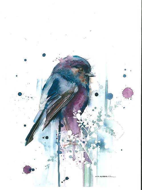 Kakaruia/Black Robin By Mia Riddell
