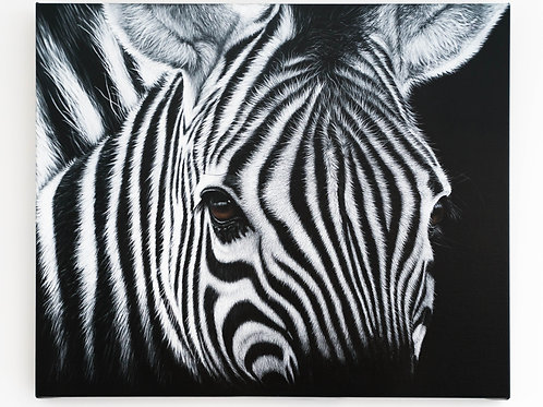 Are my stripes Black or White by Karen Rakin Neal